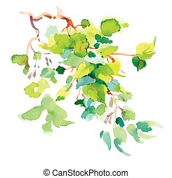 Watercolor branch with green leaves on white background.