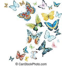 Watercolor butterflies - Beautiful vector image with nice...