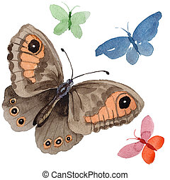 Watercolor butterfly tender insect, intresting moth, isolated wing illustration