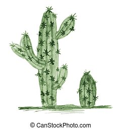 Watercolor Cactus Isolated on White Background.
