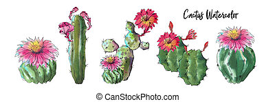 Watercolor cactus set isolated on white background.