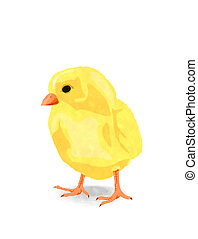 watercolor, chicken