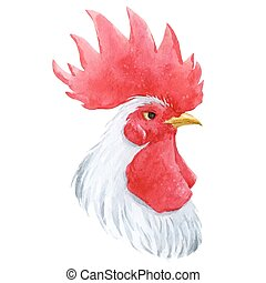 Watercolor cock rooster