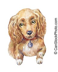 watercolor cocker spaniel dog