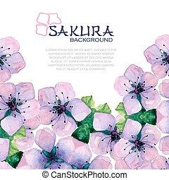 Watercolor elegant background with japanese sakura