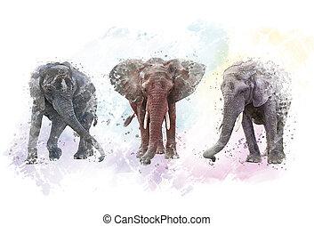 Watercolor Elephants. Digital illustration on white background.
