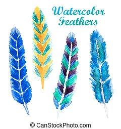 Watercolor feathe