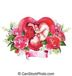 Watercolor fetus inside the womb - Watercolor fetus inside ...