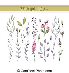 Watercolor floral collection with leaves and flowers.