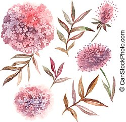 Watercolor floral set. Collection with leaves and flowers