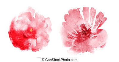 Watercolor flowers , isolated on white background