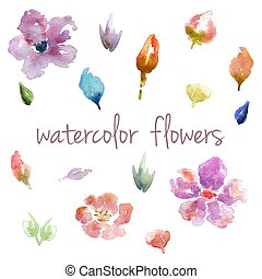 Watercolor flowers isolated on white background