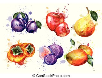 Watercolor fruits set Vector. Apple, plum, pear summer fruit compositions