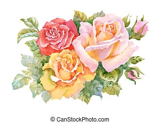 Watercolor garden blooming red roses illustration isolated on white background.