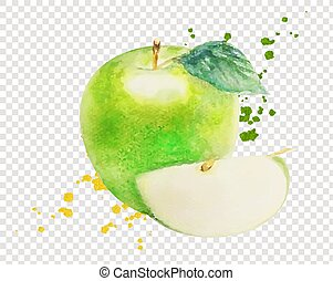 Watercolor Green Apple Isolated Transparent Background