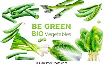 Watercolor green healthy vegetables. Asparagus, beans, onion, spinach, cabbage, pepper, cauliflower. Place for texts