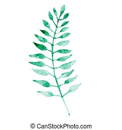 Watercolor green leaf isolated on white background.
