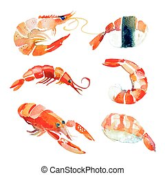 Watercolor hand drawn sushi, seafood.