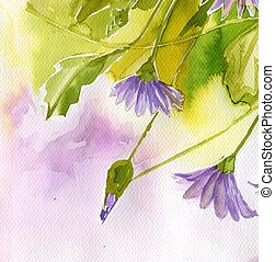 акварельная иллюстрация, изображающая весенние цветы на лугу