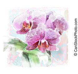 watercolor illustration of orchid brunch