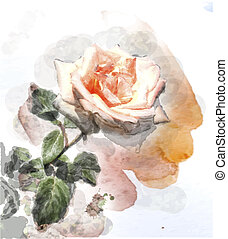 watercolor image of a rose