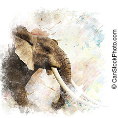 Watercolor Image Of Elephant - Watercolor Digital Painting ...