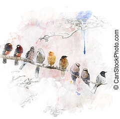 Watercolor Image Of Perching Birds - Watercolor Digital ...