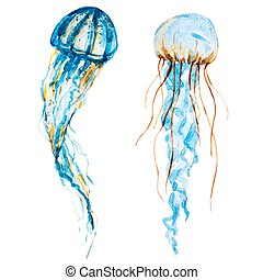 Watercolor jellyfish - Beautiful vector image with nice...