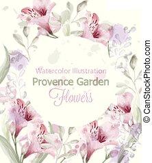 watercolor., krans, lavendel, kleuren, vector, pastelate, delicaat, bloemen, provence