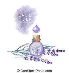 Watercolor lavender oil
