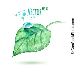 Watercolor leaf with water drop.