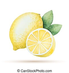 Watercolor lemon yellow