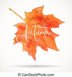Watercolor maple leaf and Autumn word