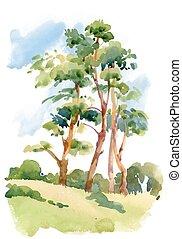 Watercolor natural summer wood landscape