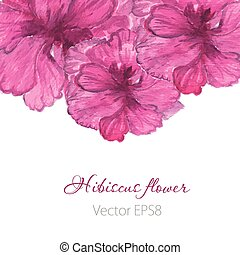 Watercolor painted  vector  hibiscus. Tropical Flower. Violet vector flower.