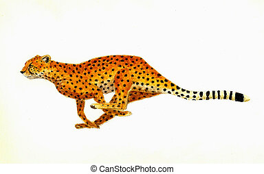 Cheetah - Watercolor Painting of a Cheetah Running