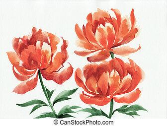 Watercolor painting of orange poppies
