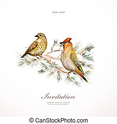watercolor painting wild bird at nature. vector illustration. in