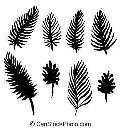 Watercolor palm tree leaves set. Black and white fronds collection. Vector illustration isolated on white background.