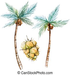 Watercolor palms - Beautiful vector image with nice...