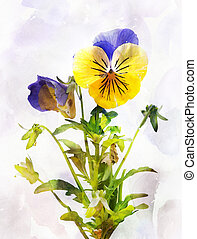 Watercolor pansy flower (Viola tricolor) - Illustration of...