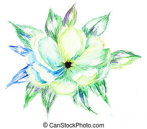 Watercolor pencil drawing of Blossoming branch of an apple-tree