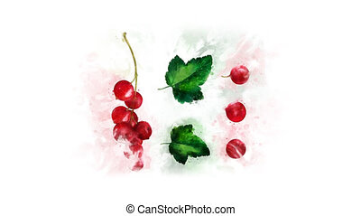 Watercolor picture Redcurrant appearance - On a transparent...