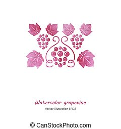 Watercolor pink grape vine.