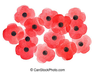 Watercolor poppy flower, Remembrance Day white background.