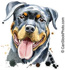 Watercolor portrait of rottweiler