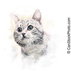 watercolor portrait of the cat