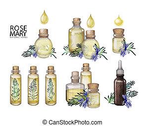 Watercolor rosemary oil bottles
