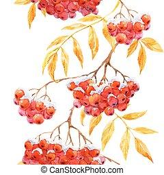 Beautiful pattern with watercolor rowan mountain ash berries