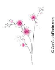 watercolor, schets, vector, orchidee